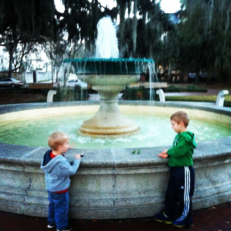 savannah - fountain