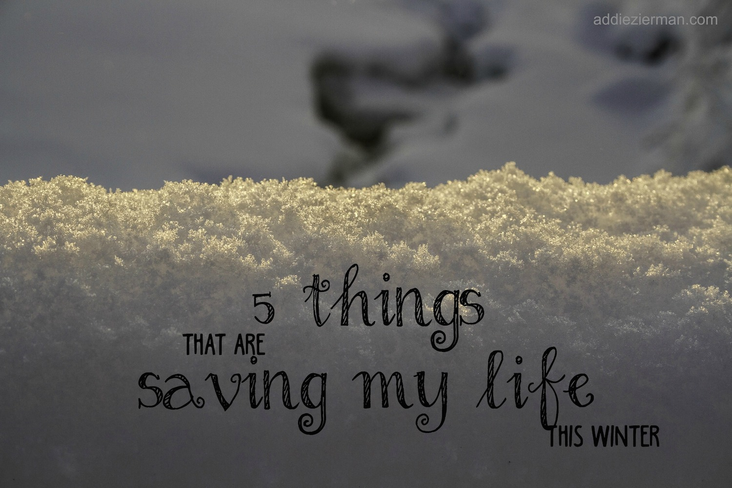 5 Things that are Saving My Life This Winter