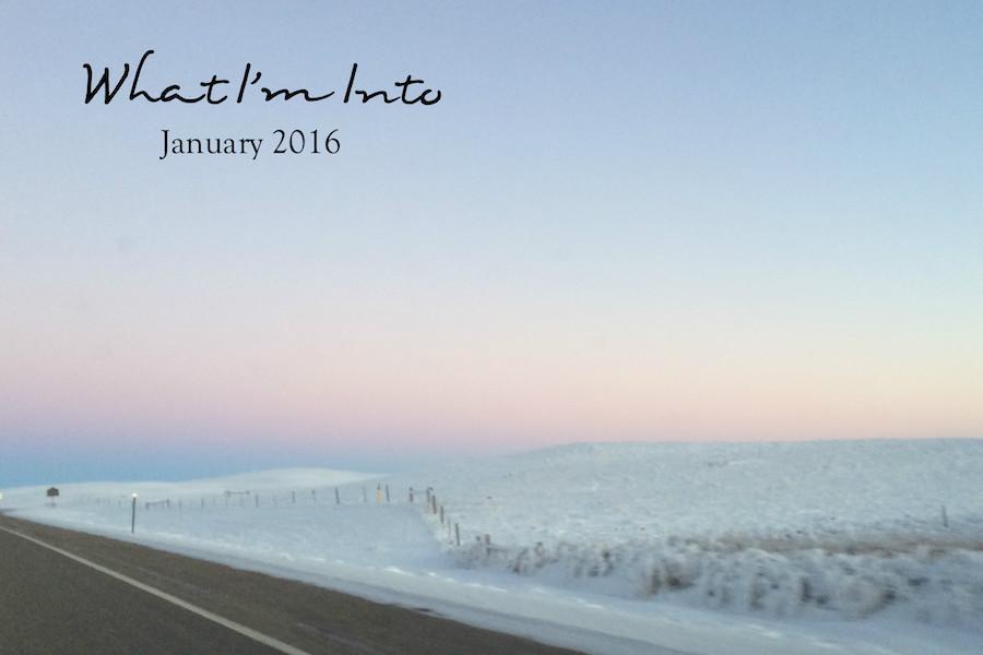 wiit - january 2016