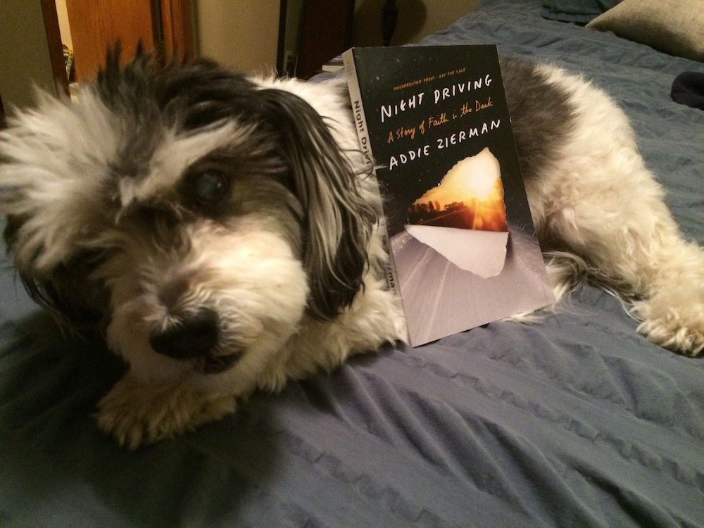 I meant to take a picture of my kids with the book, but I forgot and they're in bed now. Next best option? Book + fluffy dog.