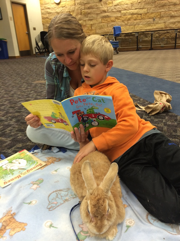 Reading to a Bunny at Rum River Library