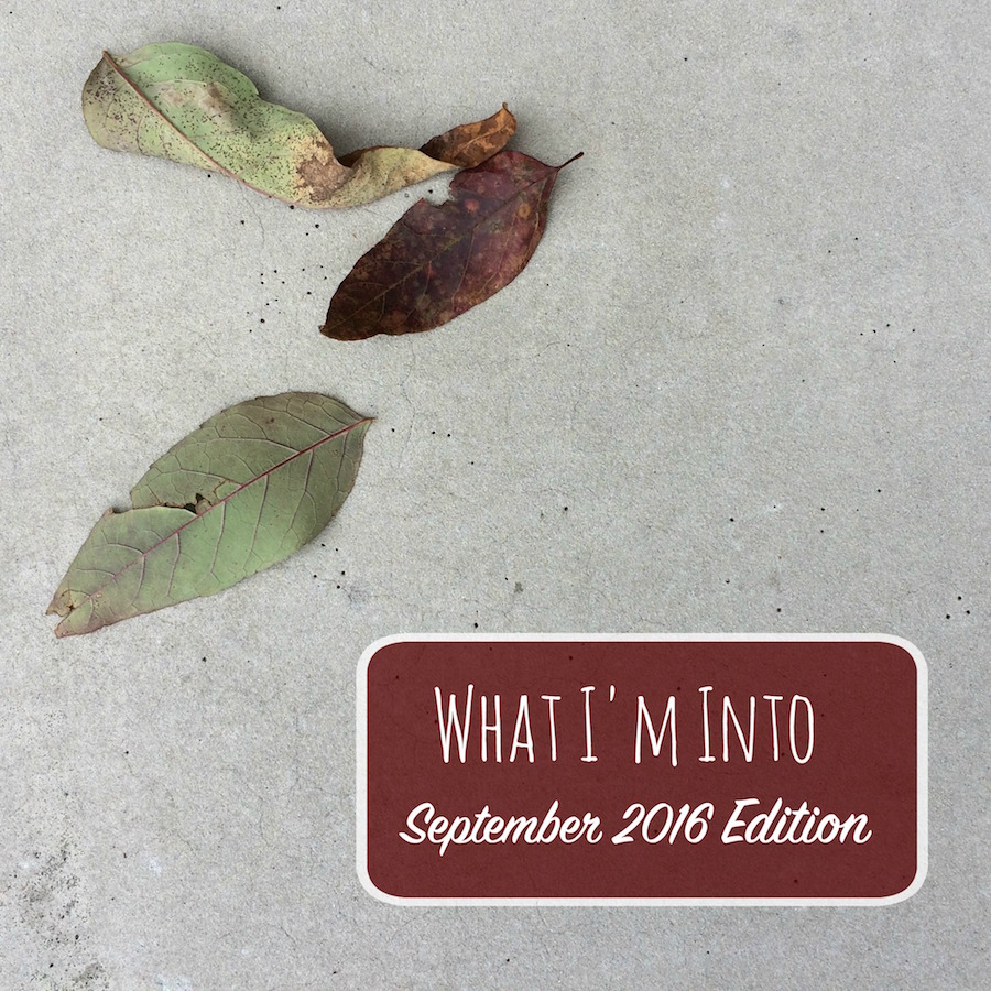 What I'm Into – The September (Why-Is-The-House-So-Quiet?!?) Edition