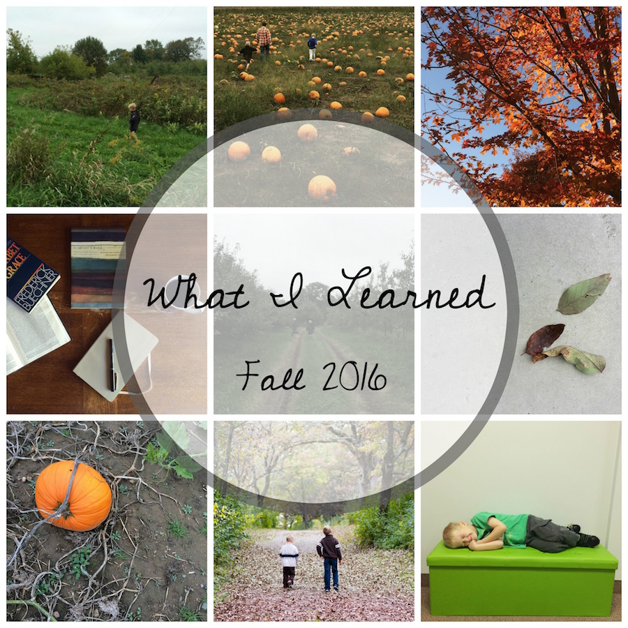 what-i-learned-fall-collage